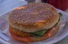 hamburger-546665_960_720