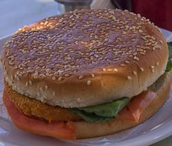 hamburger-546665_960_720