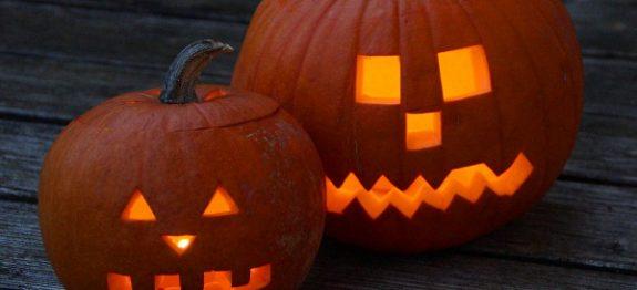 pumpkin-201960_960_720 - kopie